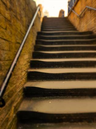 Salts Mill Steps